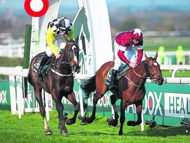 Waterford Live owner's horse entered in 2019 Aintree Grand