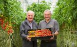 Waterford's Grantstown Tomatoes 'motivated by changing taste of customers'