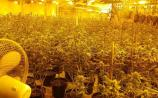 Almost €1 million worth of drugs seized in Waterford