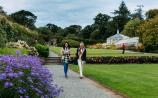 Waterford's Mount Congreve announce first Garden Celebration Day and annual Special Plant Fair
