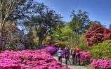 Re-opening date announced for Mount Congreve Gardens in Waterford