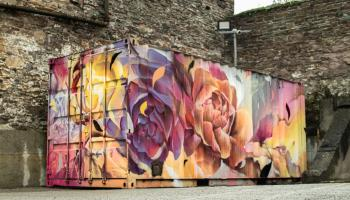 A new addition of artwork has arrived from Waterford Walls