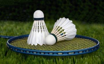 'Lively AGM essential to health of Waterford Badminton Association'