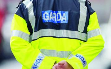 Garda brings action aimed at preventing his dismissal