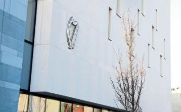 Man assaulted two brothers in Limerick on same night